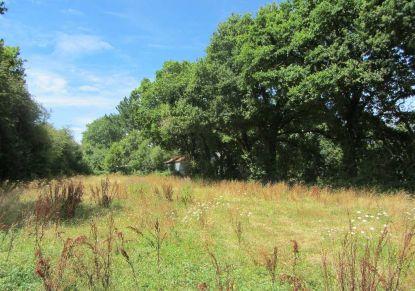 A vendre Plesse 440088394 Blain habitat