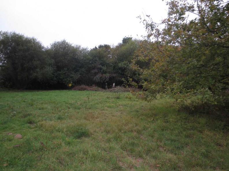 A vendre Plesse 440088877 Blain habitat