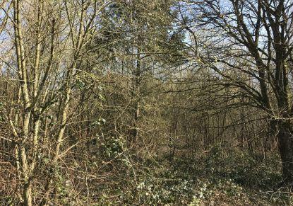 A vendre Savenay 440089394 Réseau blain habitat