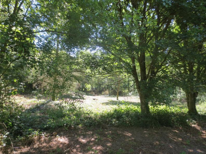A vendre Savenay 440089394 Groupe blain habitat