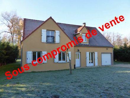 A vendre Villemandeur 450044486 Cimm immobilier
