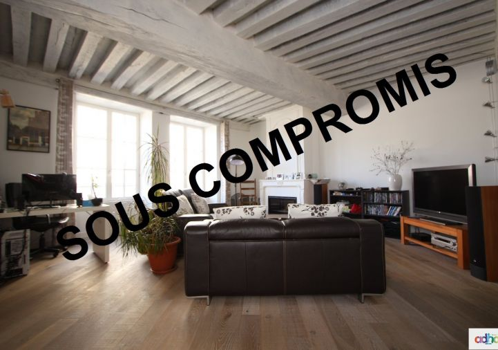 A vendre Orleans 4500516269 Ad hoc immobilier