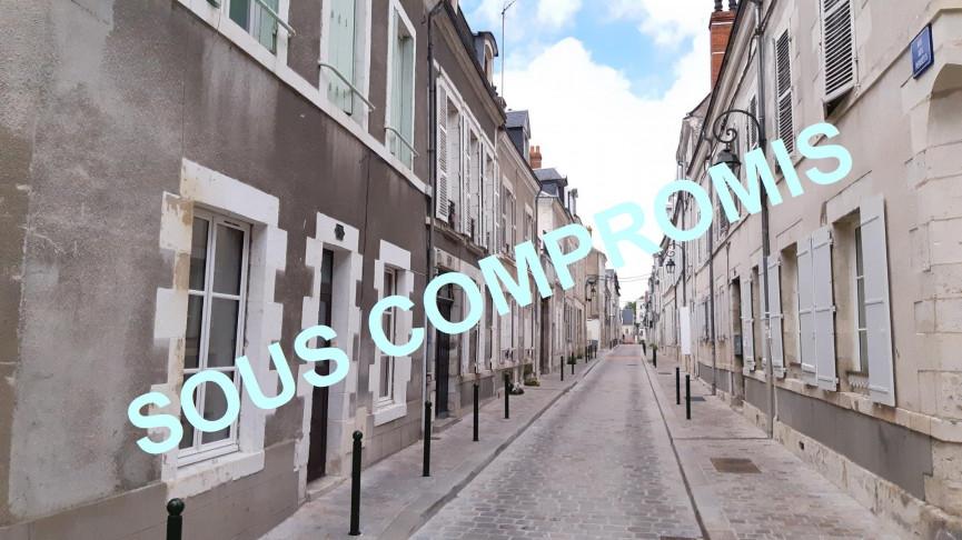 A vendre  Orleans   Réf 4500516396 - Ad hoc immobilier