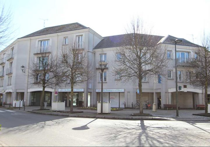 A vendre Olivet 450059534 Ad hoc immobilier