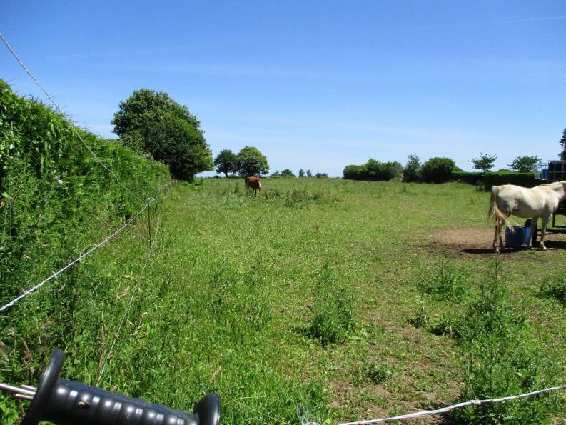A vendre Guiscriff 4400710513 Reseau blain habitat