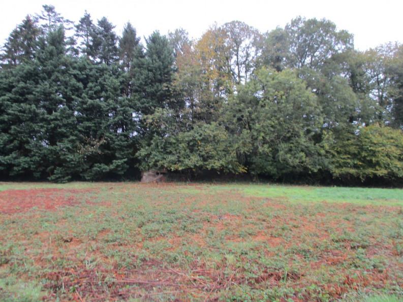 A vendre Le Faouet 5600414441 Reseau blain habitat