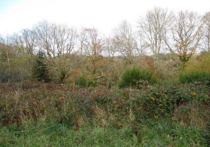 A vendre Le Faouet 5600414950 Groupe blain habitat