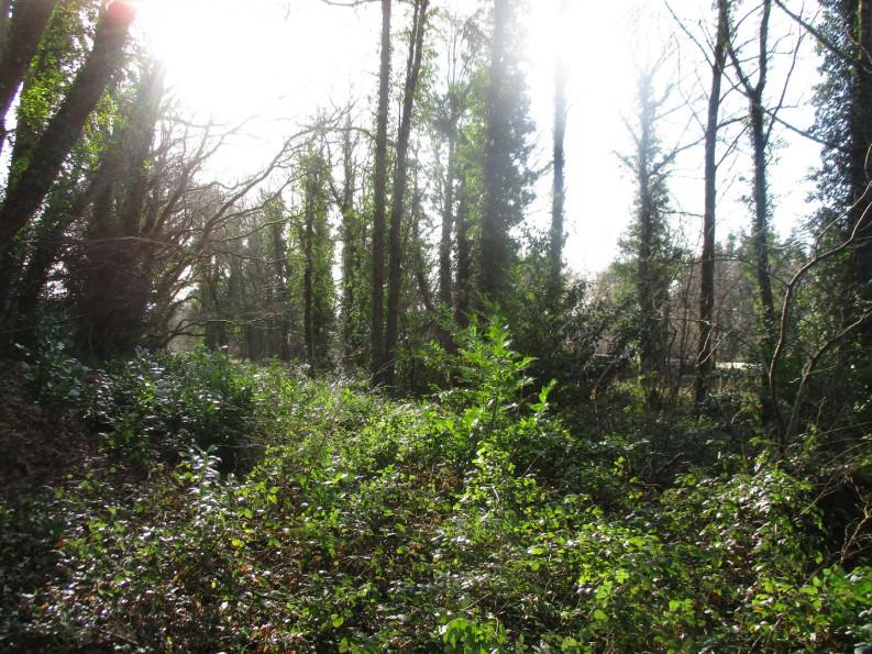 A vendre Le Faouet 5600415751 Reseau blain habitat