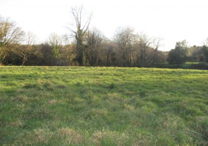 A vendre Le Saint 5600415756 Reseau blain habitat