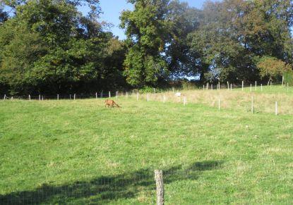 A vendre Terrain constructible Le Faouet | Réf 5600416005 - Reseau blain habitat