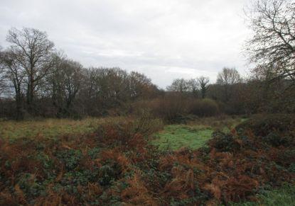 A vendre Terrain constructible Le Faouet | Réf 5600416053 - Reseau blain habitat