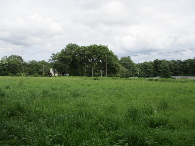 A vendre  Le Faouet   Réf 5600416253 - Reseau blain habitat