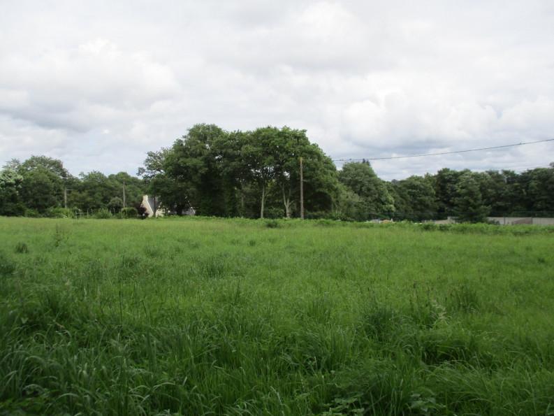 A vendre  Le Faouet | Réf 5600416254 - Reseau blain habitat
