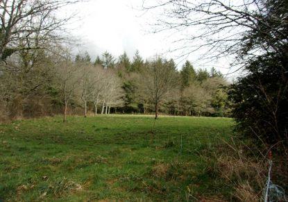 A vendre Le Faouet 560047531 Blain habitat