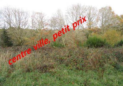 A vendre Le Faouet 560048464 Blain habitat