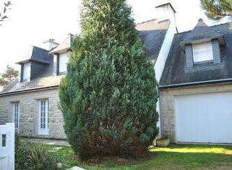 En location saisonnière Saint Philibert 56007290 Portail immo