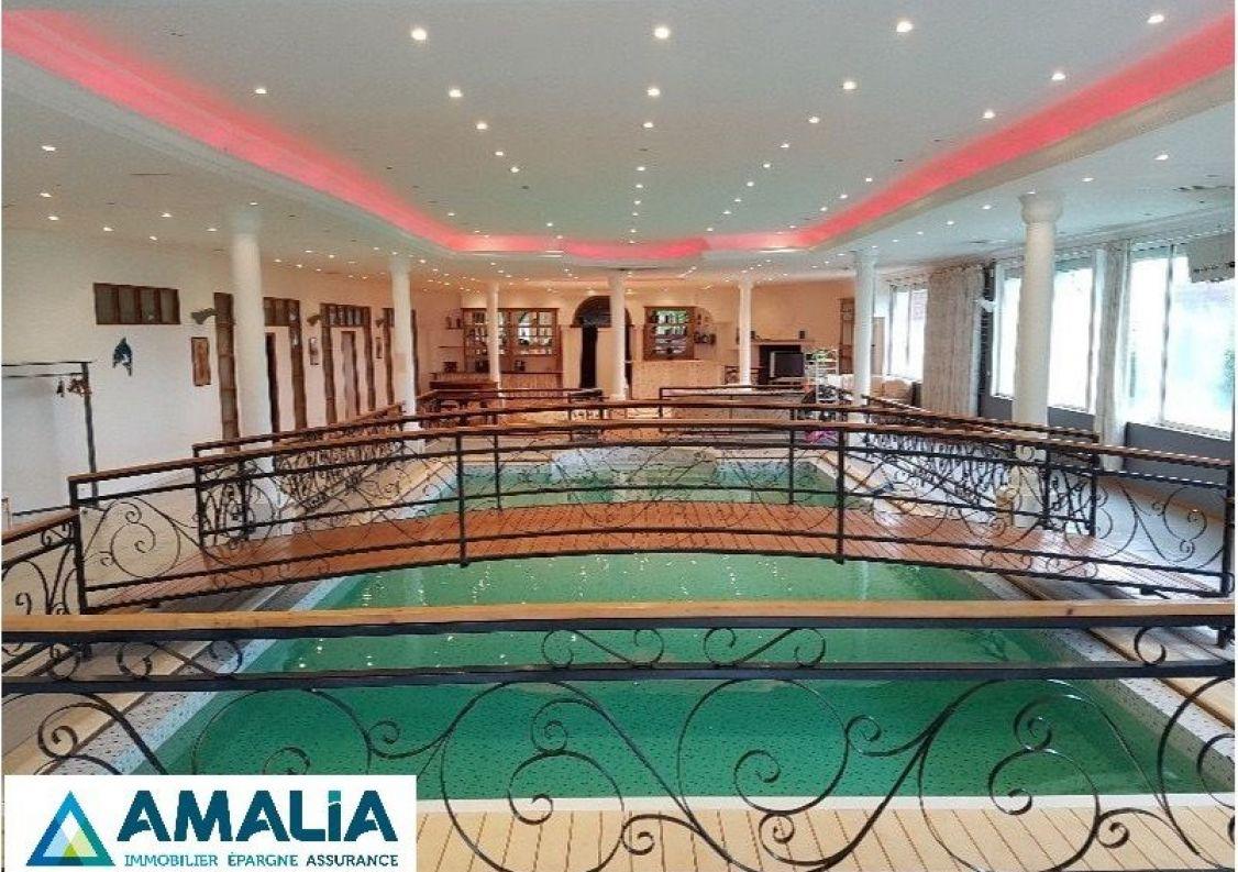 A vendre Lille 590063651 Amalia