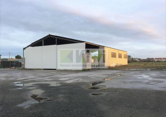 A vendre Teteghem 590131506 Kiwi immobilier