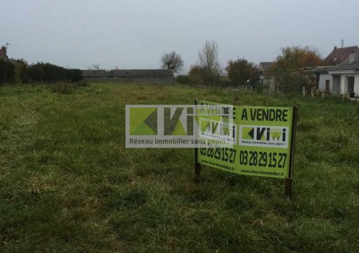 A vendre Ledringhem 59013664 Kiwi immobilier