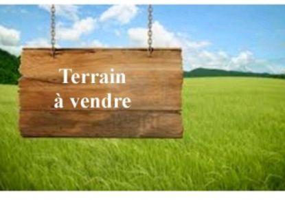 A vendre Peuplingues 62004517 Jacquard immobilier