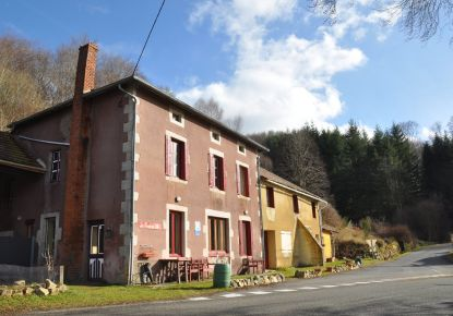 A vendre Saint Nicolas Des Biefs 63001589 Adaptimmobilier.com