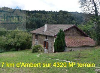 A vendre Ambert 63005292 Portail immo