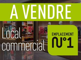 A vendre Puy-guillaume 630071299 Portail immo
