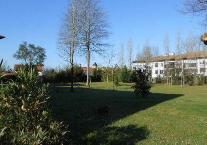 A louer Bayonne 640141578 G20 immobilier