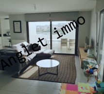 A vendre Biarritz  64016149 G20 immobilier