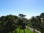 En location saisonnière Argeles Sur Mer 660062898 Odv - office des vacances