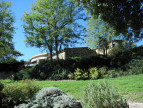 A vendre Ceret 660342887 Must immobilier
