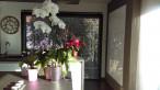 A vendre Torreilles 6605716 Les plus belles adresses