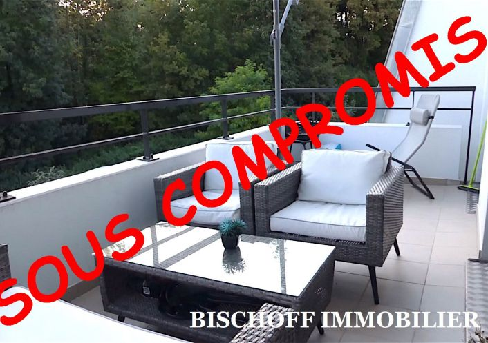 A vendre Kembs 68005469 Bischoff immobilier