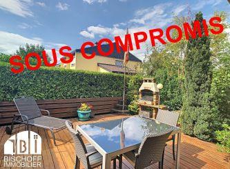 A vendre Saint Louis 68005634 Portail immo