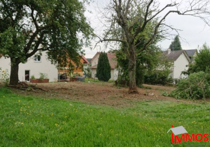 A vendre Waldighofen 680091400 Muth immobilier / immostore
