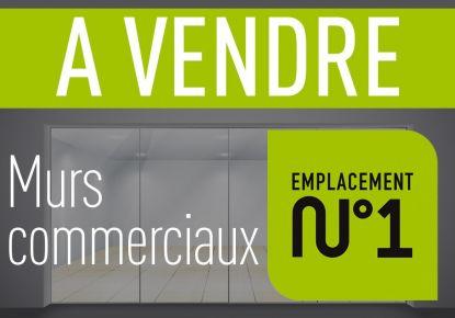 A vendre Lyon 2eme Arrondissement 690041061 Adaptimmobilier.com