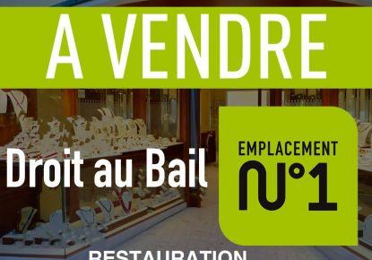 A vendre Lyon 7eme Arrondissement 690041290 Casarèse