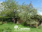 A vendre Nivillac 690041492 Casarèse