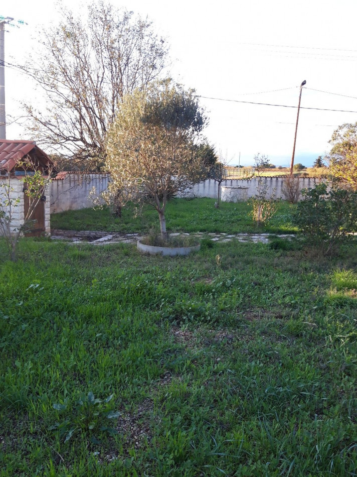 For sale Marseillan 690042507 Casarèse