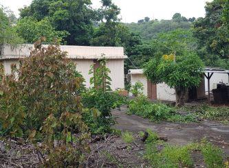 A vendre Bois De Nefles Saint Paul 690042960 Portail immo