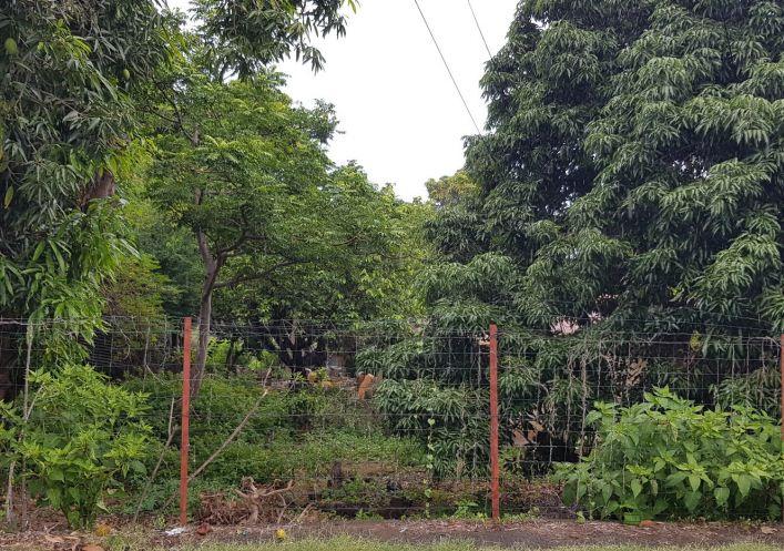 A vendre Bois De Nefles Saint Paul 690042961 Casarèse
