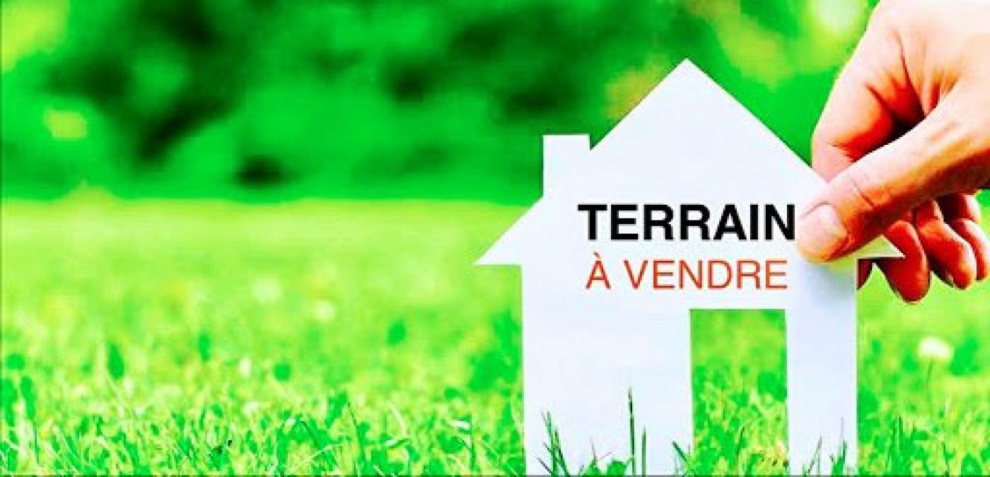 A vendre Saint Louis 690043310 Casarèse