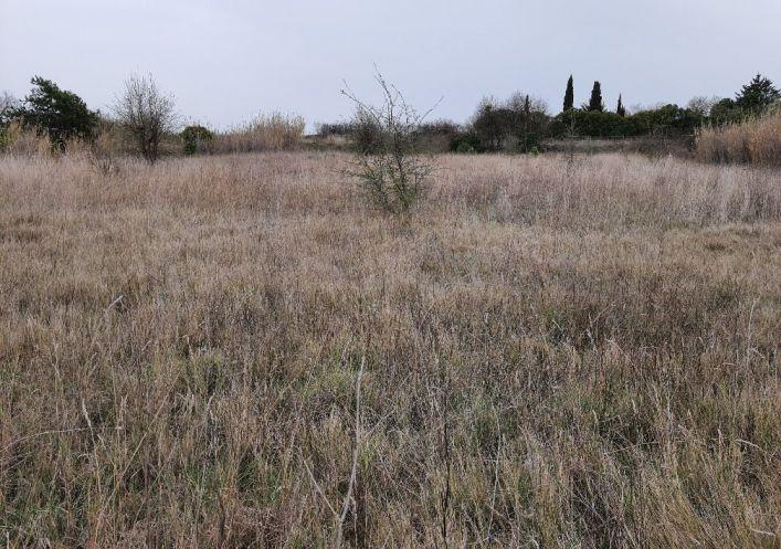 A vendre Terrain agricole Marseillan | Réf 690044254 - Casarèse