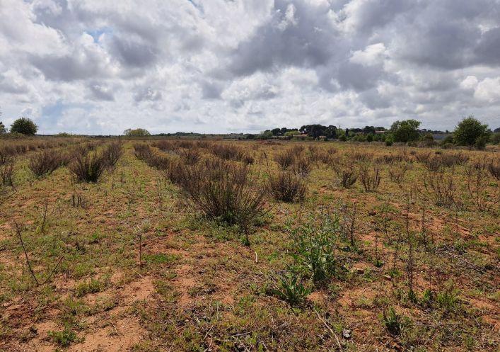 A vendre Terrain agricole Marseillan   Réf 690044509 - Casarèse
