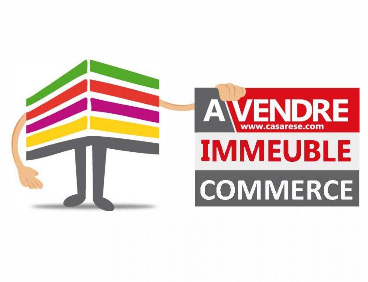 A vendre  Orleans   Réf 690044761 - Casarèse