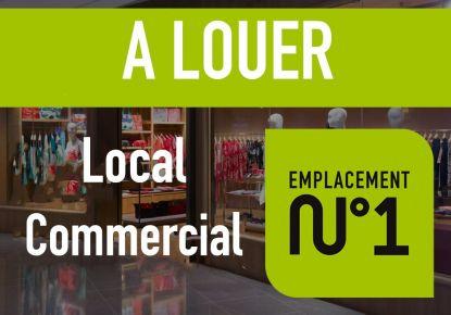 A louer Lyon 3eme Arrondissement 69004852 Casarèse