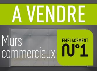 A vendre Saint-leu 690262646 Portail immo