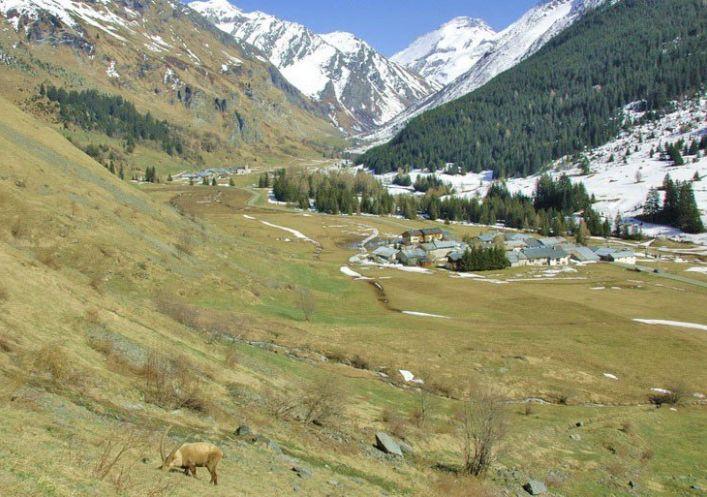 A vendre Champagny En Vanoise 73023136 Propriété des alpes