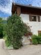 A vendre  Talloires   Réf 73023268 - Propriété des alpes