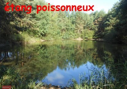 For sale Mezieres En Brenne 7401413242 Rezoximo